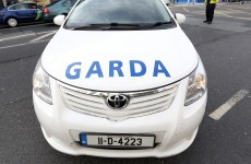 Over 300 new Garda cars were bought this year, so who got them?