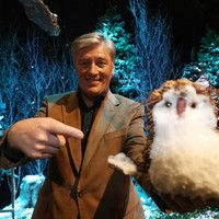 Pat Kenny has explained why he doesn't miss the Toy Show