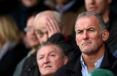Eric Elwood back in rugby as domestic manager with Connacht