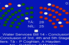 Amid claims of drunkenness, the Seanad has voted to pass the Water Services Bill