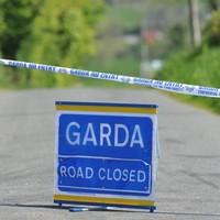 Man in his 20s dies after his van struck a tree in Longford