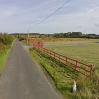 Tragedy before Christmas as elderly farmer and his dog killed in household blaze