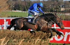 Leopardstown Festival winds down as Hurricane Fly shines yet again