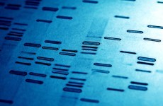 New national DNA database to become operational this year