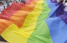 NI's future health minister: gay pride parade participants 'repugnant'