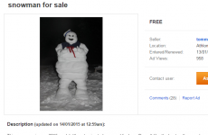 Do you wanna build a snowman? Or you could just buy one on Adverts.ie