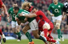 New Zealand native Anscombe included in Gatland's 34-man Six Nations squad