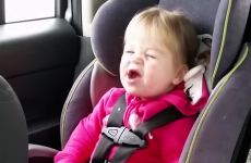 This toddler lip-syncing to Taylor Swift in the car is wonderful and hilarious
