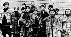 'We were woken by these piercing screams': Survivors remember the horror of Auschwitz