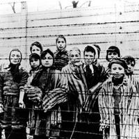 'We were woken by these piercing screams': Survivors remember the horror of Auschwitz