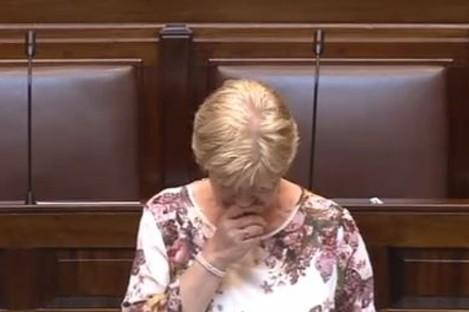 Anne Ferris during a previous Dáíl debate