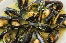 Bad news if you love mussels: 10,000 tonnes of top quality Irish shellfish is unfit to eat