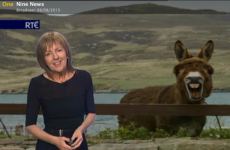 7 of the all-time best Irish TV weather moments