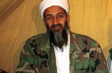Bin Laden raid 'was always shoot to kill' as new details emerge