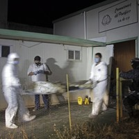 Mexican police find 60 corpses left rotting in abandoned crematorium