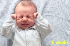 Beautiful timelapse video captures baby as he grows from newborn to toddler