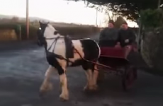 Two auld lads doing donuts, rural Irish schtyle