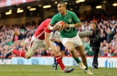 One French journalist had a very French description of Zebo's role in the Ireland team