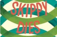 David Cameron chooses Irish novel Skippy Dies as his summer read