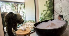 A new hotel in Australia lets you dine with lions and take a bath next to bears