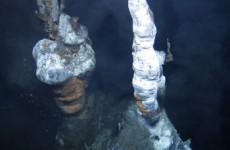 Irish scientists discover new life beneath the sea