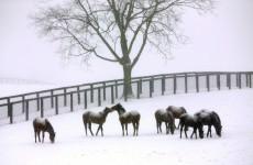 Brrr! America braces itself for 'truly frigid' weather
