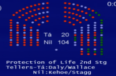 Can fatal foetal abnormalities be legislated for? Politicians want to take ANOTHER look...