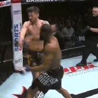Chris Fields' UFC hopes knocked back as he suffers devastating TKO after 23 seconds