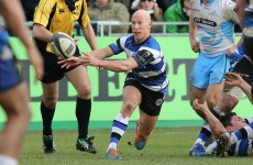 Great news! Peter Stringer says he has no intention of calling it a day at the end of the year