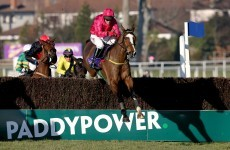 Paddy Power has been taking in record bets - but how many are winners?