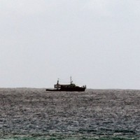 Boat capsizes: 50 reported dead