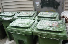 Ohio woman died after falling into green bin