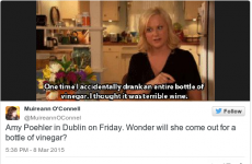 8 of the best offers Amy Poehler's going to get in Dublin