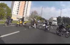 Hero bikers band together to save scared dog on motorway