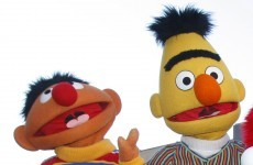 Thousands call for Muppet marriage... between Bert and Ernie
