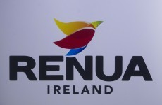 'Is it a bird? Is it a plant?': What on earth is that Renua Ireland logo all about?