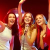 Cut the music: Police bust illegal karaoke website