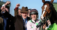 Willie Mullins just had the most dominant week in Cheltenham history - and here's the proof