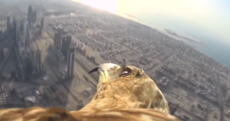 Watch an eagle-eyed view of what it's like to fly from the world's tallest building