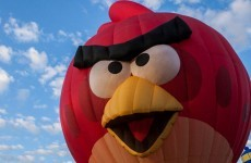 The company that created smartphone sensation Angry Birds is in freefall