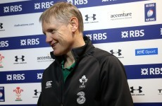 Ex-Scotland coach says 'pretty ordinary' Joe Schmidt is not a messiah