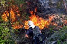 If you're out walking this spring, don't start forest fires