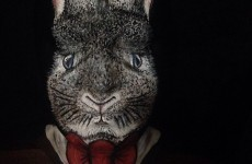 Look at this Limerick artist's incredibly realistic Easter bunny makeup
