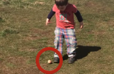 Take a break and watch this kid's adorable Easter egg fail