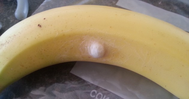 "Thurles man ""freaked"" after finding spider nest on Aldi banana"