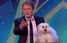 The owner of the 'talking' dog on Britain's Got Talent is facing questions from animal charities