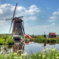 Dutch banker loses job after secret life as a dominatrix revealed