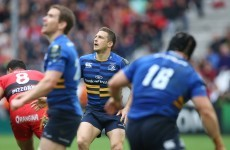 For one brief moment, every Leinster fan thought they were going to the European Cup final