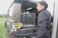 Top Gear's Richard Hammond made a video about how mind numbingly bored he is