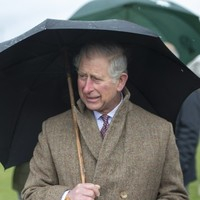 Prince Charles and Camilla are coming to Ireland